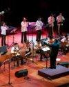orquesta andina chica